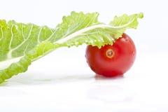 Tomaat en groen saladeblad Royalty-vrije Stock Fotografie