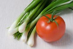 Tomaat en groene uien Royalty-vrije Stock Afbeelding