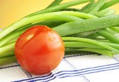 Tomaat en groene uien Royalty-vrije Stock Afbeeldingen