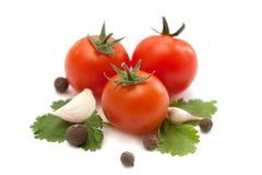 Tomaat en knoflookgroenten met geïsoleerd peterseliekruid Stock Foto's