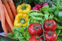 Tomaat en salade Stock Foto
