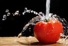 Tomaat en Water Royalty-vrije Stock Afbeeldingen