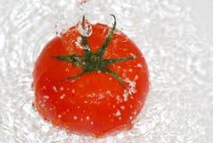 Tomaat in het bespatten van water Stock Foto