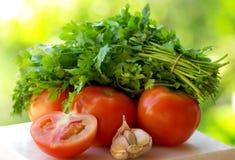 Tomaat, knoflook en groene koriander. royalty-vrije stock afbeelding