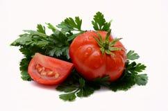 Tomaat met bladpeterselie Stock Afbeelding