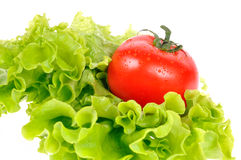 Tomaat op saladeblad royalty-vrije stock foto