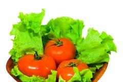 Tomaat in salade Stock Fotografie