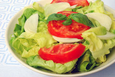 Tomaat-sla salade Royalty-vrije Stock Foto