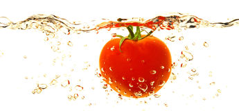 Tomaat in water royalty-vrije stock afbeeldingen