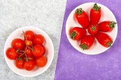 Tomaccio och Roma tomater Arkivfoton