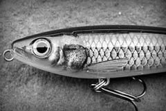 Tomada da atração de Subwalk da batida de Rapala X para peixes predatórios grandes imagem de stock royalty free