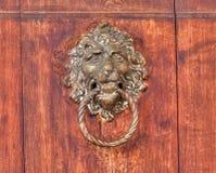 Tomada do relevo do bronze do leão do vintage em um fundo de madeira imagens de stock royalty free