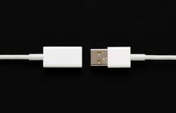 Tomadas masculinas e fêmeas de USB Fotos de Stock
