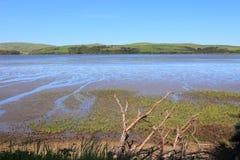 Tomales Bay, California Stock Image