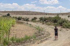 Toman el individuo el tiro del paisaje cerca del campo de maíz foto de archivo