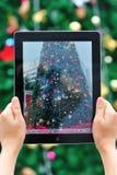 Tomando a foto da árvore de Natal Fotos de Stock Royalty Free