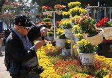 Tomando a foto de flores coloridas Imagens de Stock