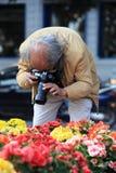 Tomando a foto de flores coloridas Imagem de Stock Royalty Free