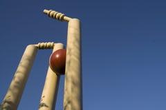 Tomando um wicket (quarto para o texto) Imagens de Stock Royalty Free