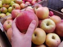Tomando uma maçã para comprar imagens de stock royalty free