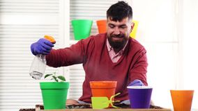 Tomar el buen cuidado de plantas Hombre joven hermoso que riega la planta en conserva mientras que se coloca en peque?o sitio del almacen de video