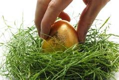 Tomar el huevo del oro Fotos de archivo libres de regalías