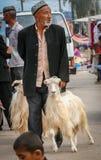 Tomar la cabra para la venta Fotografía de archivo