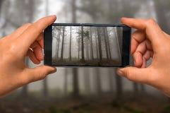 Tomar la foto de la niebla en el bosque frecuentado con el teléfono móvil Foto de archivo