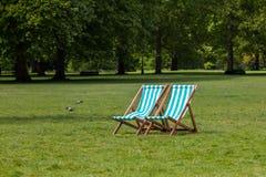 Tomar sol no parque Foto de Stock
