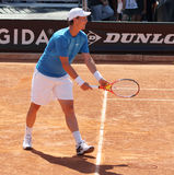 Tomas Berdych Royalty Free Stock Photography