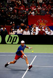 Tomas Berdych-1. BELGRADE-NOVEMBER 15:Player T.Berdych (CZE) run for a ball during a match against D.Lajovic (SRB) during final Davis Cup Serbia-Czech Republic.T Royalty Free Stock Images