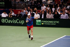 Tomas Berdych-3. BELGRADE-NOVEMBER 15:Player T.Berdych (CZE) run for a ball during a match against D.Lajovic (SRB) during final Davis Cup Serbia-Czech Republic.T Stock Image