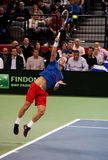 Tomas Berdych. BELGRADE-NOVEMBER 15:Player T.Berdych (CZE) served a ball during a match against D.Lajovic (SRB) during final Davis Cup Serbia-Czech Republic.T Stock Images