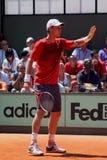 Tomas Berdych, el jugador de tenis Imagenes de archivo