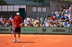 Tomas Berdych en Roland Garros 2011 Imagenes de archivo