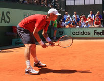 Tomas Berdych at Roland Garros 2011  Royalty Free Stock Photography