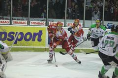 Tomas Hertl - Slavia Prague Stock Photography