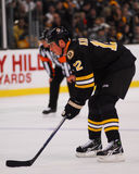 Tomas Kaberle, Boston Bruins Stock Image