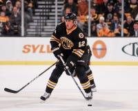 Tomas Kaberle, Boston Bruins Stock Photography