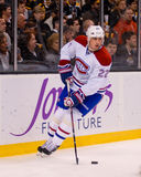 Tomas Kaberle Montreal Canadiens Stock Photography