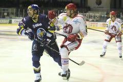 Tomas Plekanec - ice hockey Stock Image