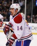 Tomas Plekanec Montreal Canadians Lizenzfreie Stockbilder