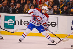 Tomas Plekanec Montreal Canadiens Royalty Free Stock Photo