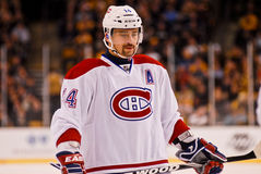Tomas Plekanec Montreal Canadiens Stock Photo
