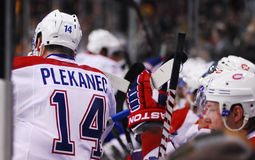 Tomas Plekanec Montreal Canadiens Photographie stock