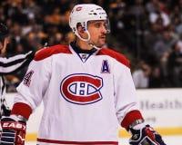 Tomas Plekanec Montreal Canadiens Stockbild