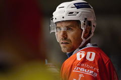 Tomas Rolinek / Pardubice. PARDUBICE 22/08/2015 _ Match of Hockey Champions league between HC Pardubice and HC Davos Stock Image