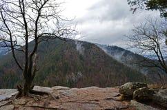 Tomasovsky widok w Słowackim raju, Sistani obrazy stock