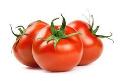 tomat Royaltyfria Foton