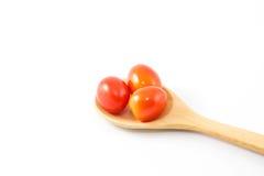 Tomat Fotografering för Bildbyråer